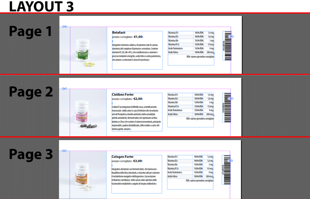 Example of InDesign document layout