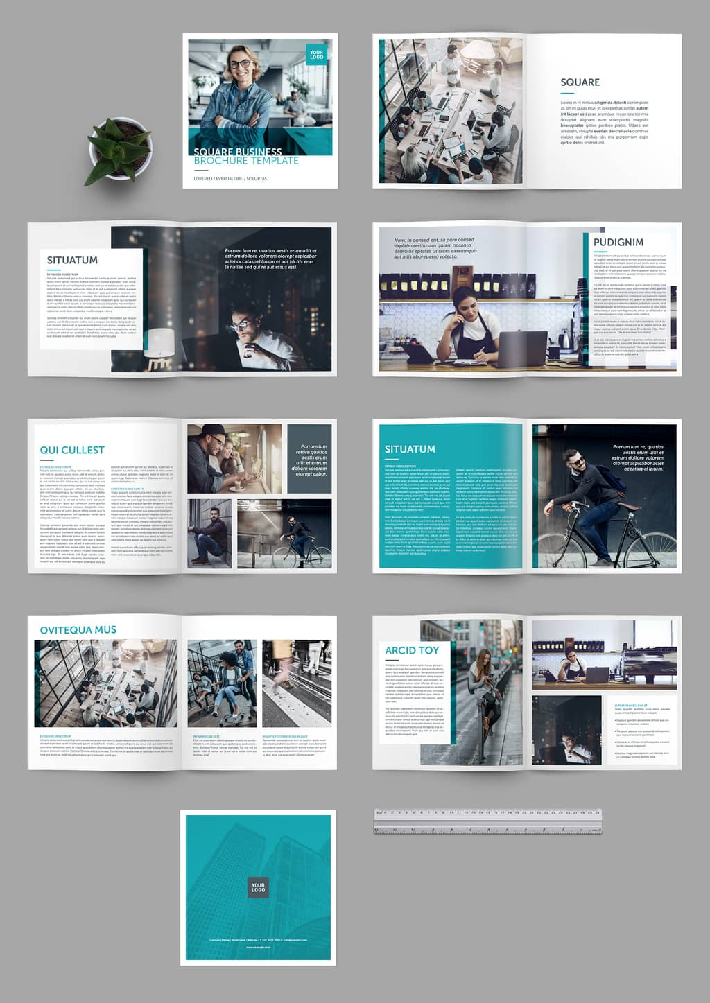 Business Brochure Template Preview