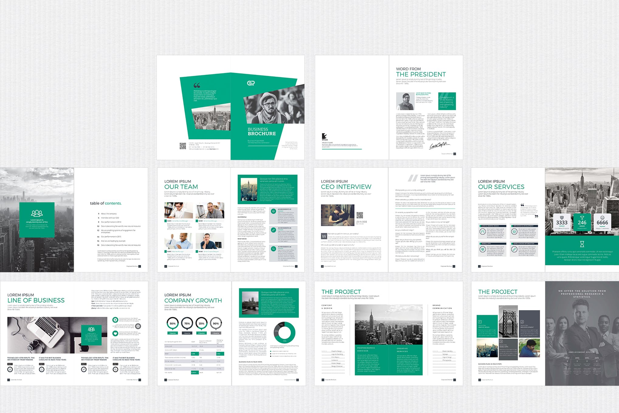 The Stylish elegance brochure template