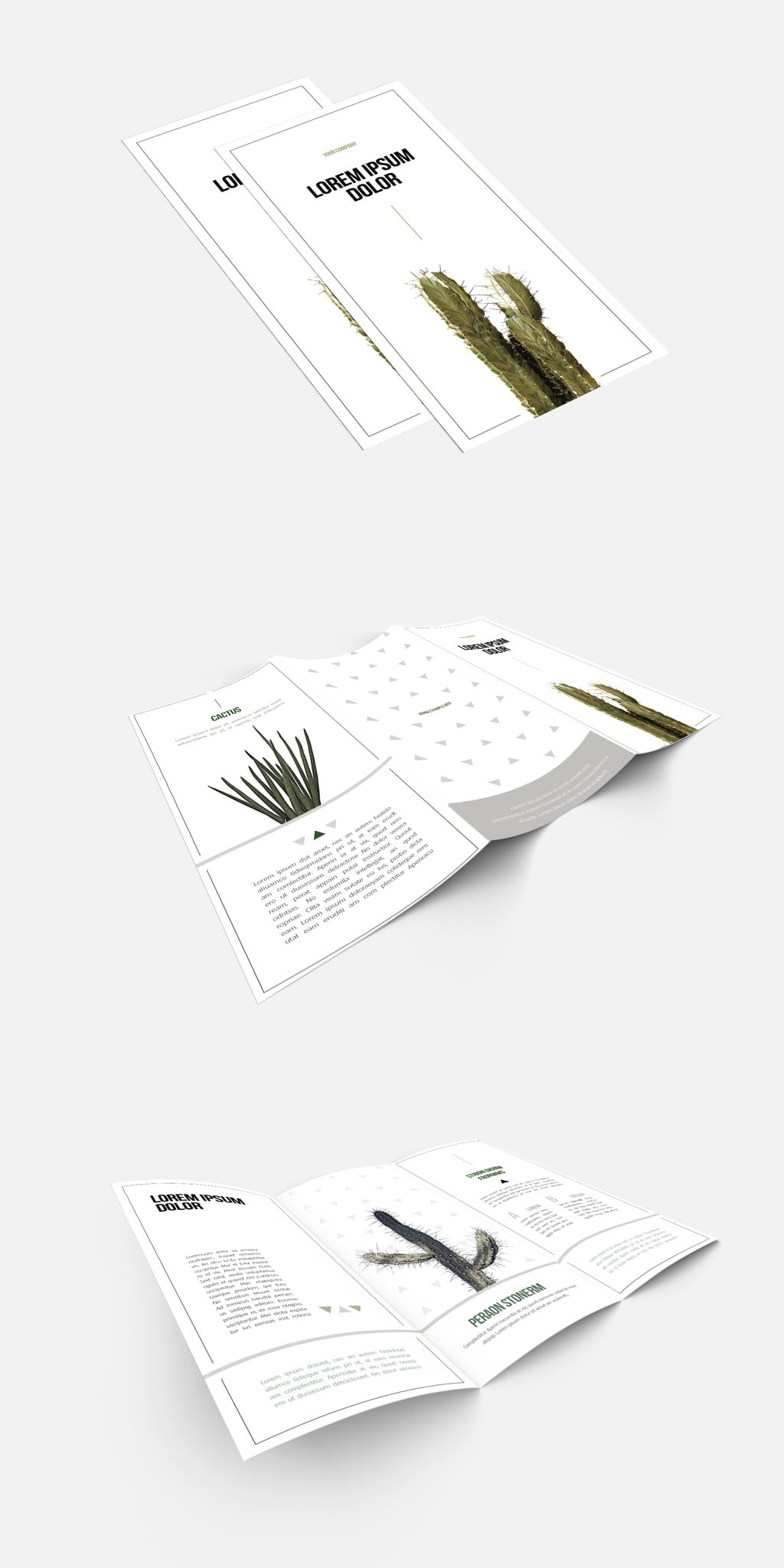 White Base Trifold Brochure template
