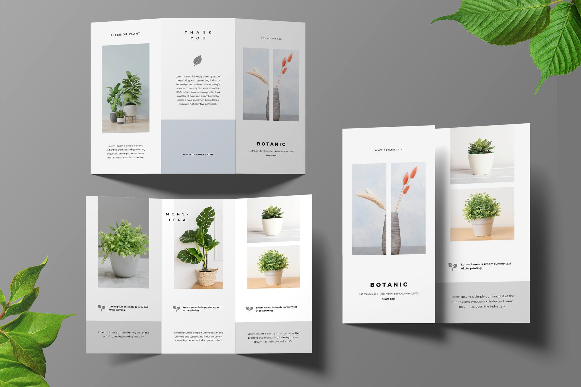 Botanical trifold brochure template