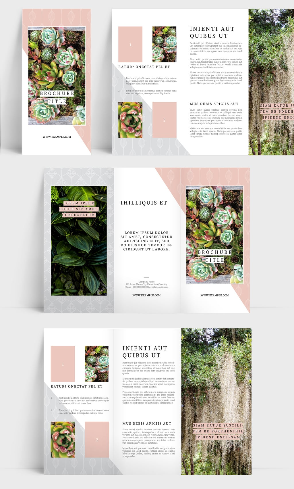 InDesign Trifold Template Free: Delightful Trifold Brochure Layout