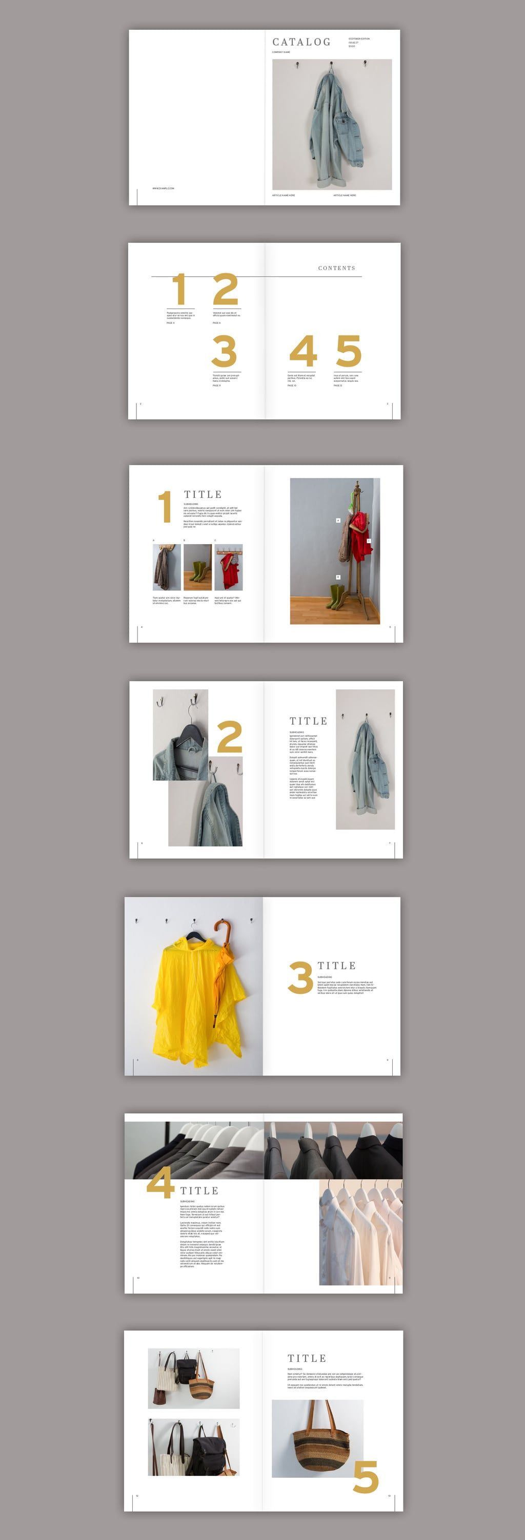 Grey and Gold Combination brochure template