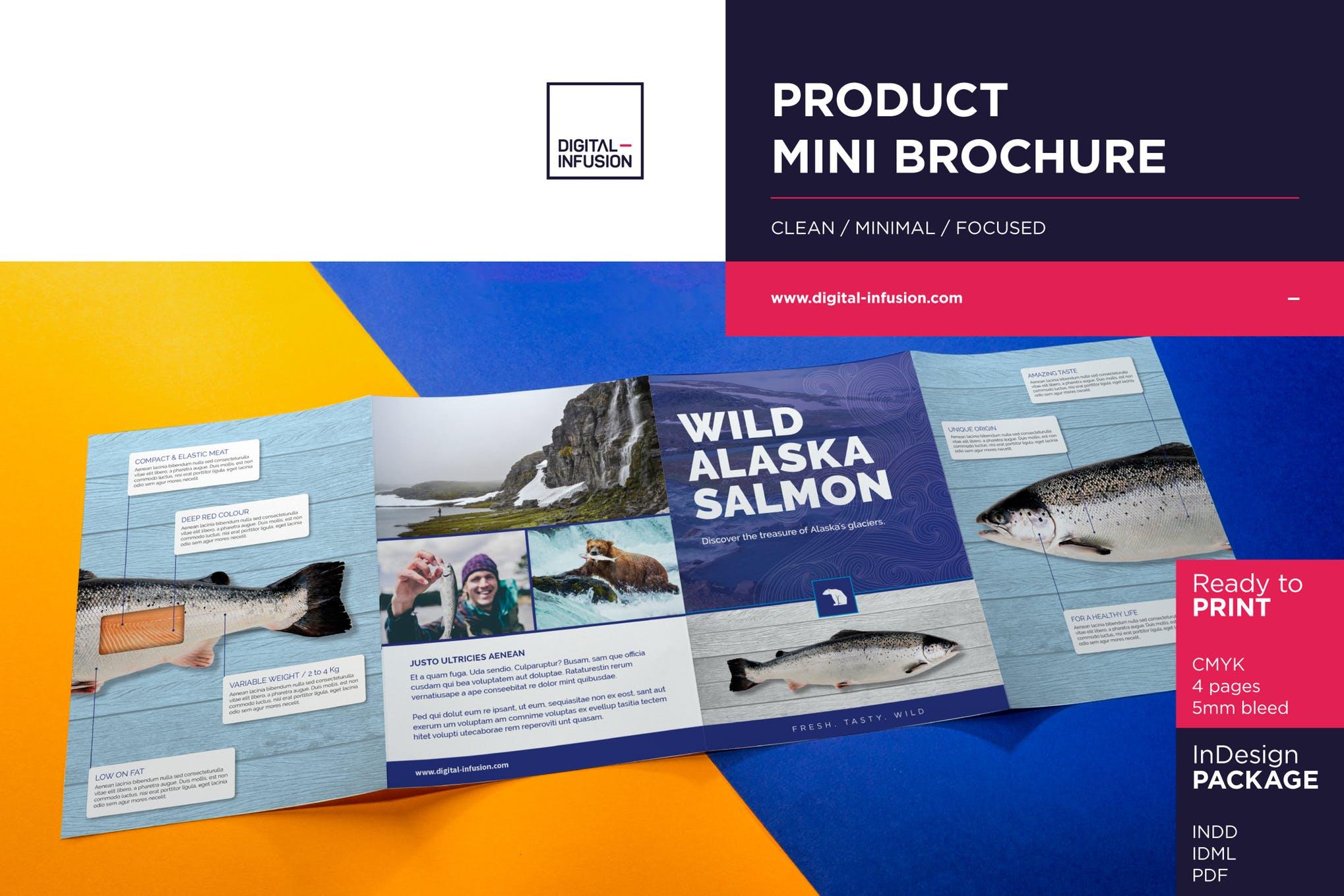 Product Mini Brochure template