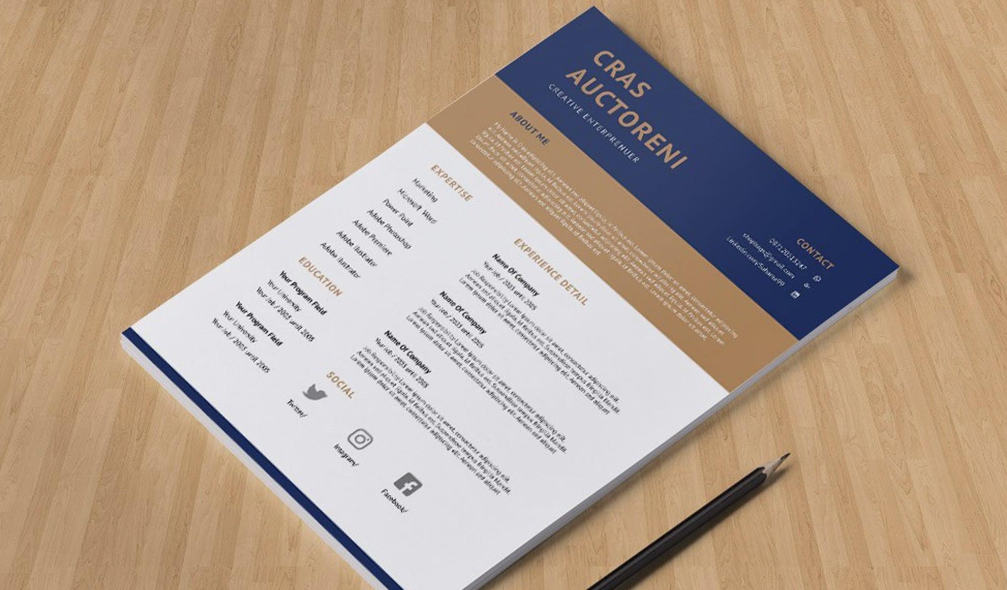 Flat Elegant CV template
