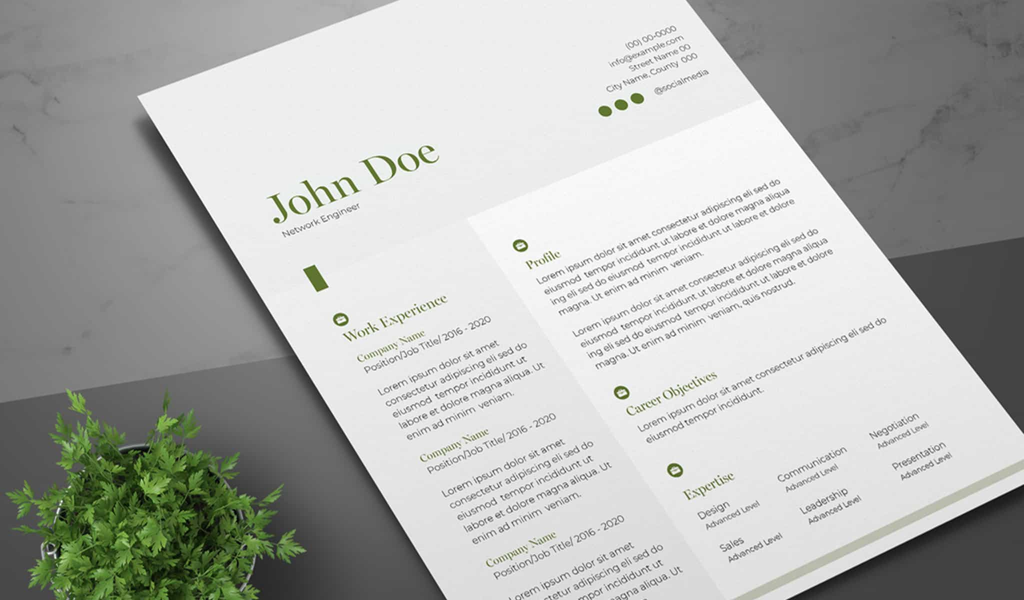 Resume Layout with Green Accents