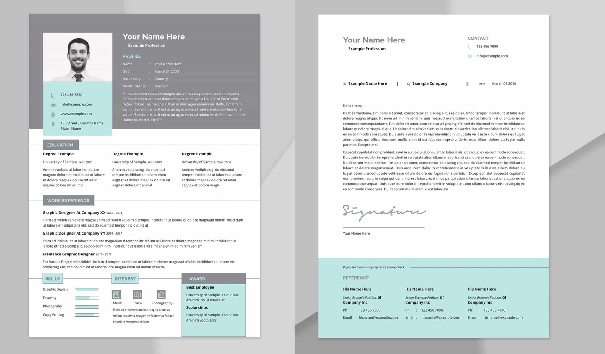 Resume Layout with Light Blue and Grey Accents